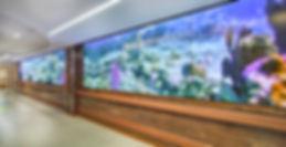 MRHS_4th floor renovation_Videowall_2017