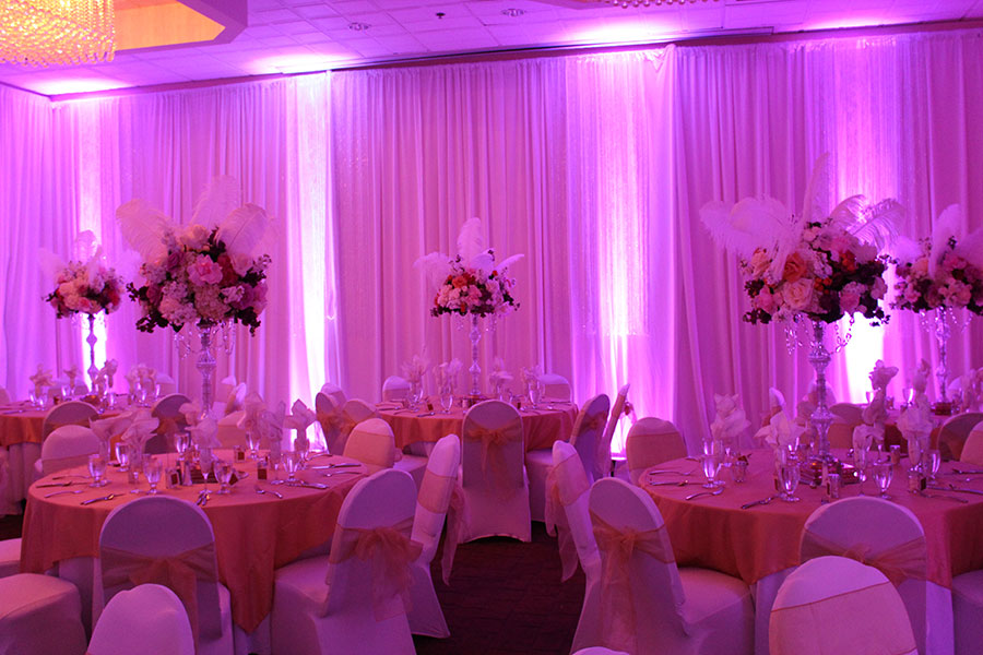Pink LED Wireless Uplighting