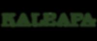 Logo_HD_PNG (2).png