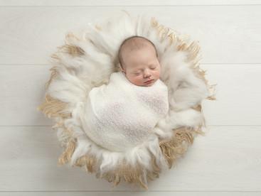 11 day old Roman & big brother Mason   Newborn