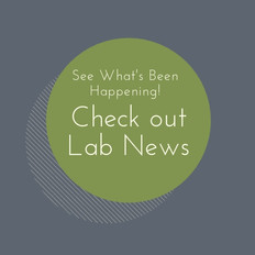 Lab News (2).jpg