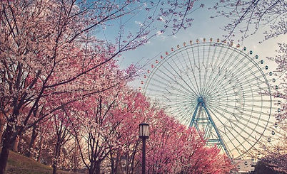 Japan with Osaka bay Area tour packages 2017