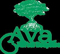 Ava Herbal Bodycare.png