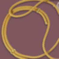 Telefoonhoesje met koord goud.jpg