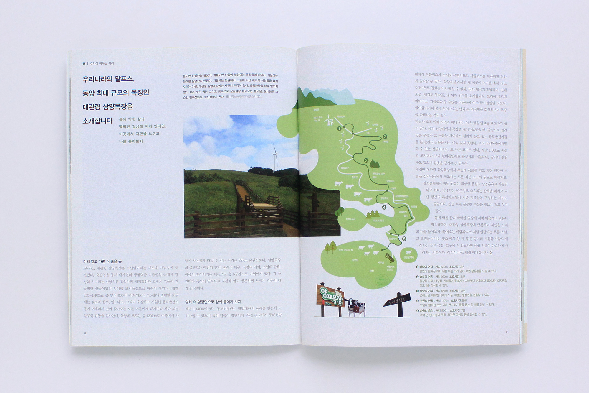 2013-징검다리 (9)