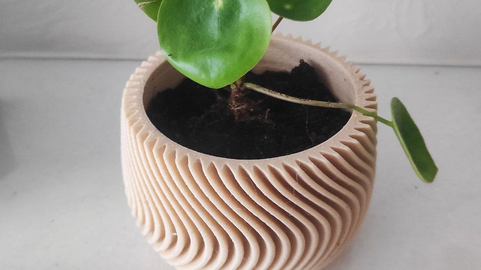 Funky plantpot