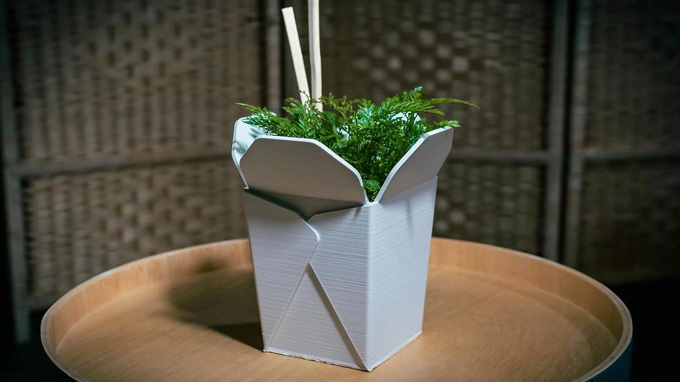 Noodle - Plantpot