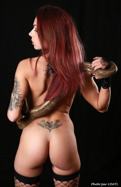 Cynthia serpente