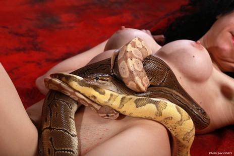 Azylise, femme-serpents