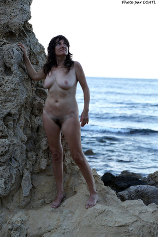 Wild au bord de mer