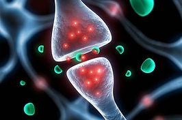 neurotransmetteurs.jpg