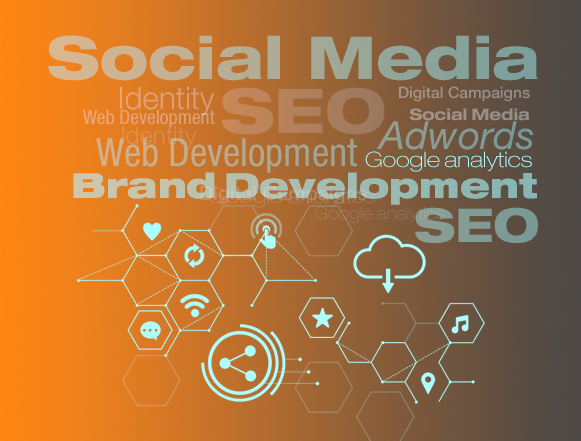 WEB / SOCIAL MEDIA / SEO