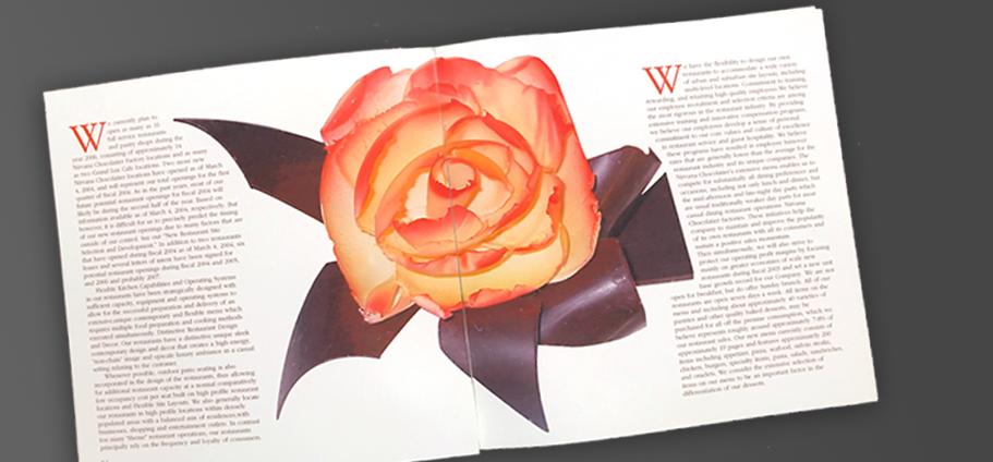 Brand identity - editorial design