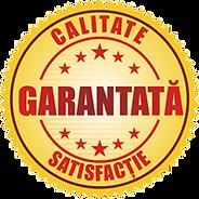 garantia calitatii comanda lucrare licen