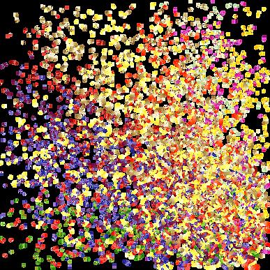 Confetti Burst_edited.png