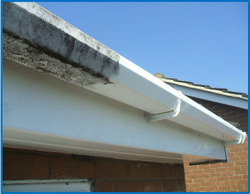 Gutters and Roofline