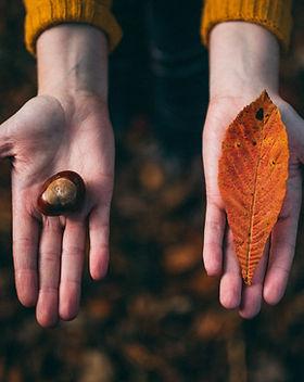 Fichas de otoño