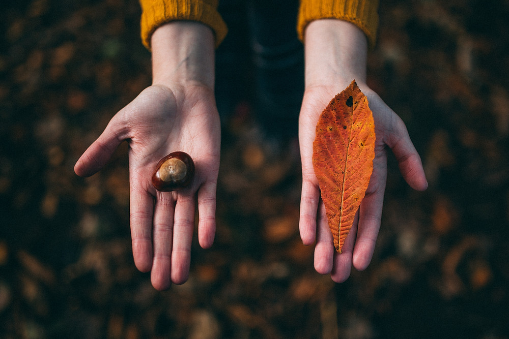 hands with fall tokens