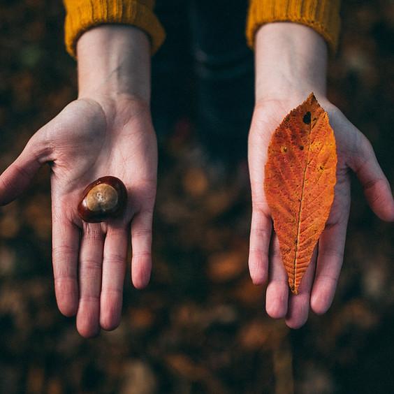Autumn Equinox Lore and Magic - Workshop