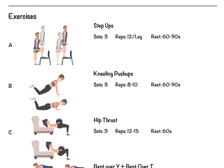 Novice Home Workout Program Phase 1 - Day B