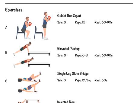 Novice Home Workout Program Phase 2 - Day A