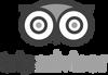 1200px-TripAdvisor_logo.svg copy.png