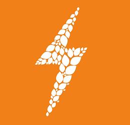 Lustig-Muesli Nueces-logo.png