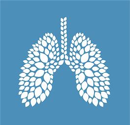 Lustig Muesli Higos-logo.png