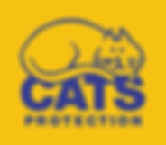 arc vets cats protection