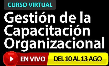 LOGO-CAPACITACION-PROAPTIVO-AGO20.png