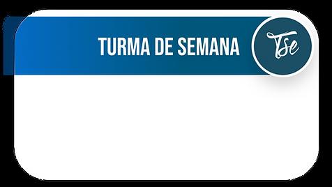 Site - TSE.png