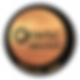 main_std_2019_bronze.png
