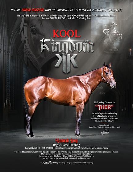 2021 Kool Kingdom Stallion Ad FINAL for