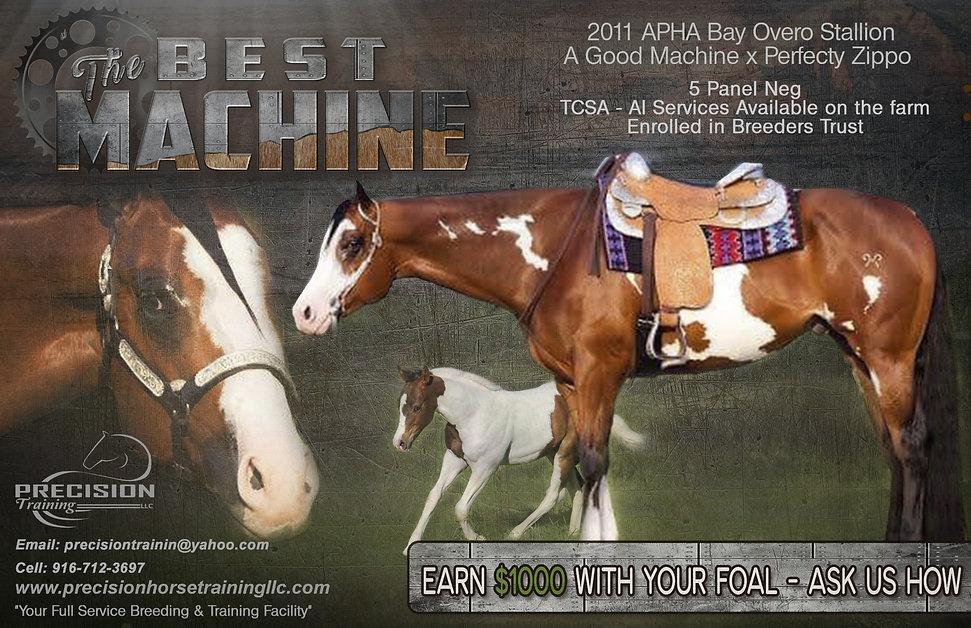 Stallion Best Machine.jpg