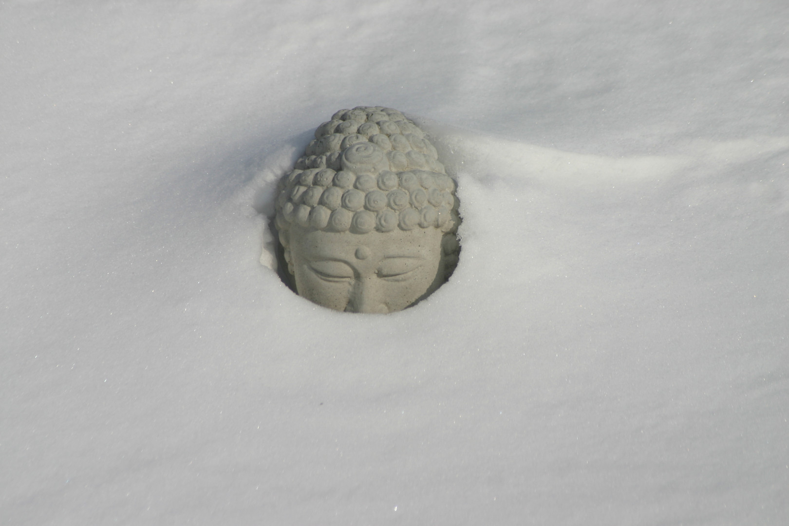 snow buddha head.jpg