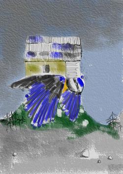 """""""bird house"""", Olivia Weiss"""