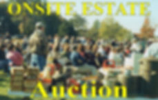 onsite-estate-pic-300x191.jpg