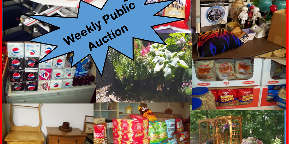 Weekly Public Auction (6)