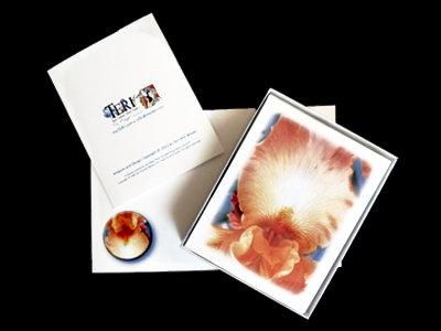 Peach Iris Note Card