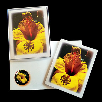 Yellow Hibiscus CU Note Cards