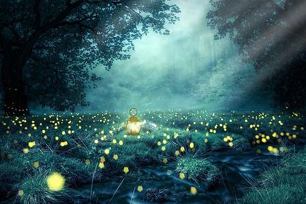 lucioles.jpg