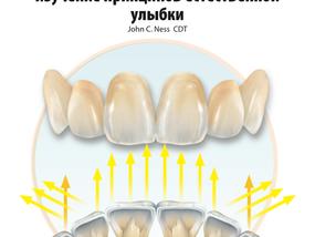 Анатомия передних зубов и изучение принципов естественной улыбки