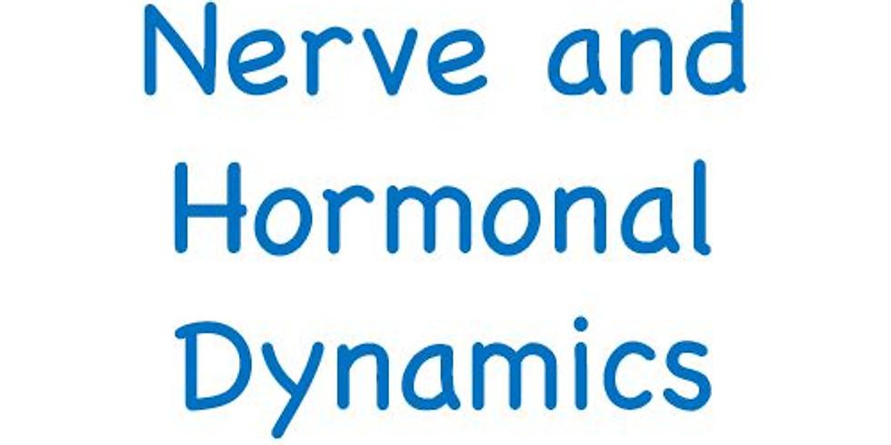 Nerve & Hormonal Dynamics