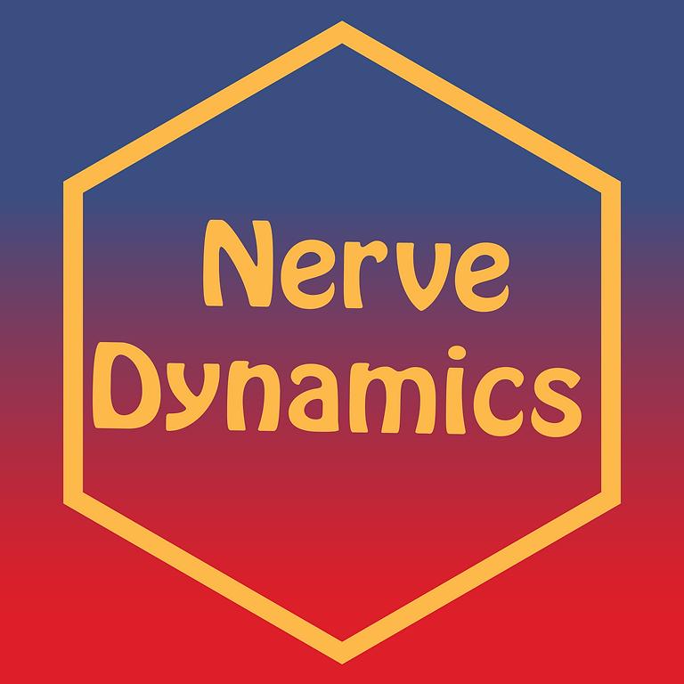 Nerve Dynamics