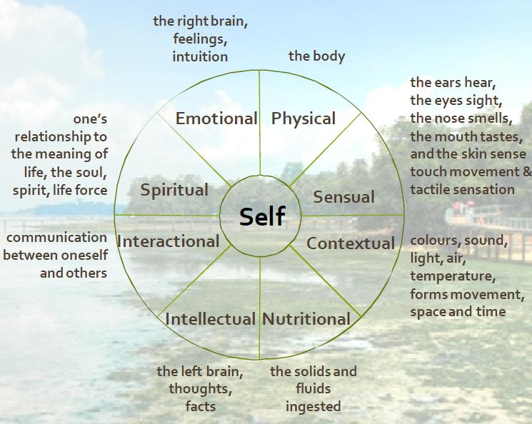 The Self Mandala Framework