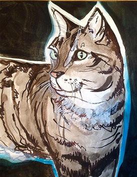 cat 5.2.jpg