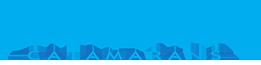 Seawind-logo-transparent.png