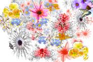 blumenhimmel, Poster Collage aus Blumen