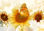 Herbstwiese, Sonnenblumen mit Schmetterling, Poster digitale Kunst