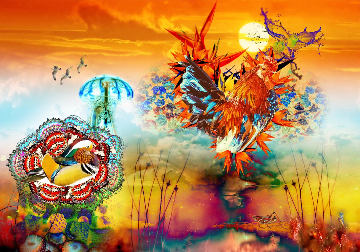 Vögel am Himmel, digitale Collage